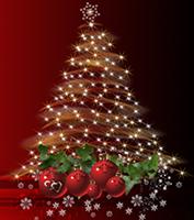 Giorni di chiusura durante le festività natalizie